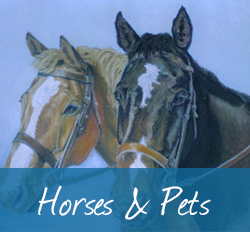 Collection Images Horses